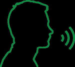 Voice Tech Strategy