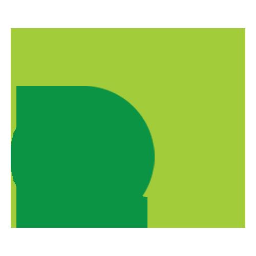 KLI core Values
